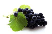 adp-laboratoire-minceur-marc-raisin