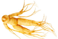 adp-laboratoire-tonus-foie-ginseng